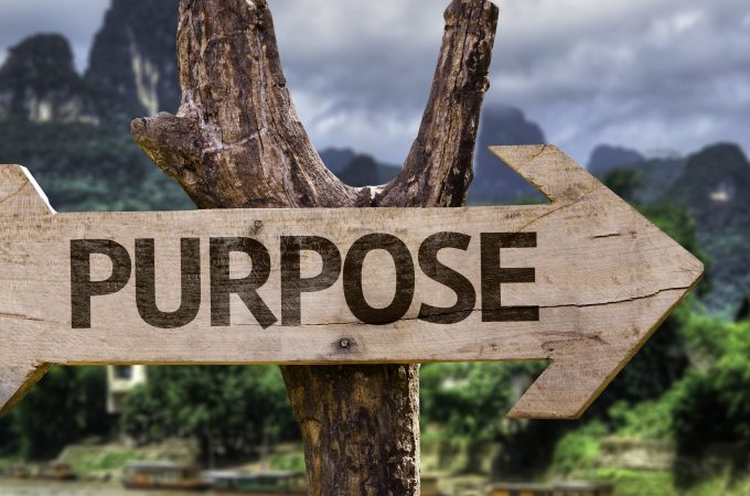 Are You Fulfilling Your Professional Purpose